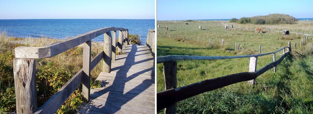 Strand Übergang Hohwachter Bucht