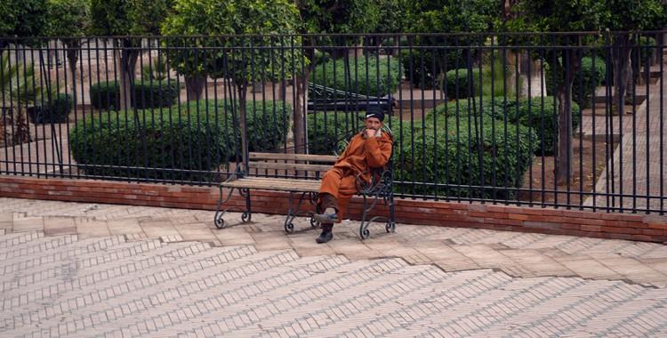 Typischer Stadtführer Marrakesch