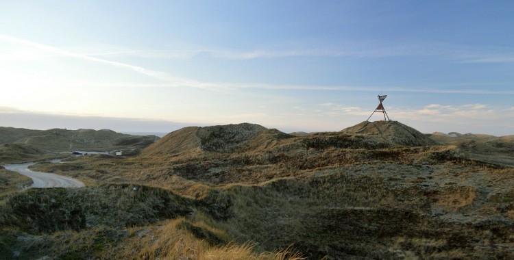 Dänemark Dünen Nordsee