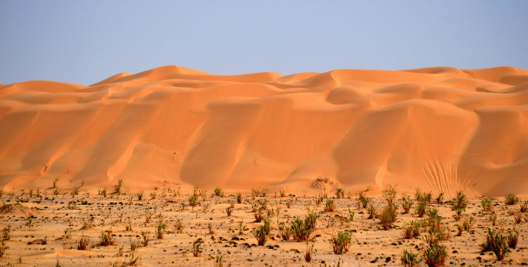 Oman  Rub' al Khali